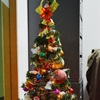 Xmas tree at office.